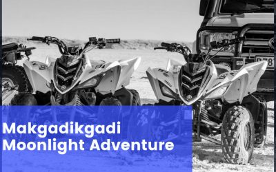 Makgadikgadi Moonlight Adventure