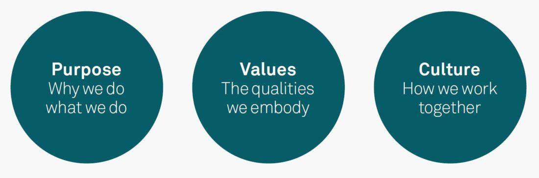 Culture values ZimNinja