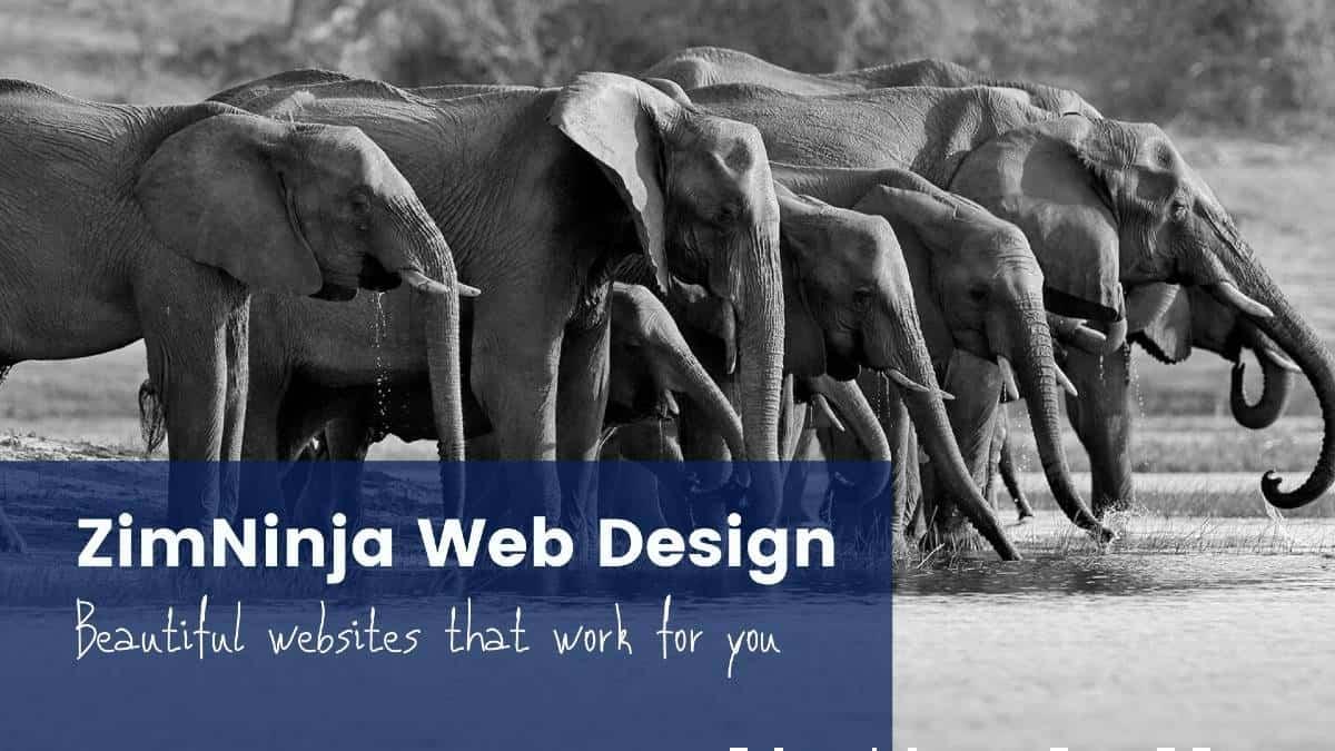 Zimbabwe Web Design