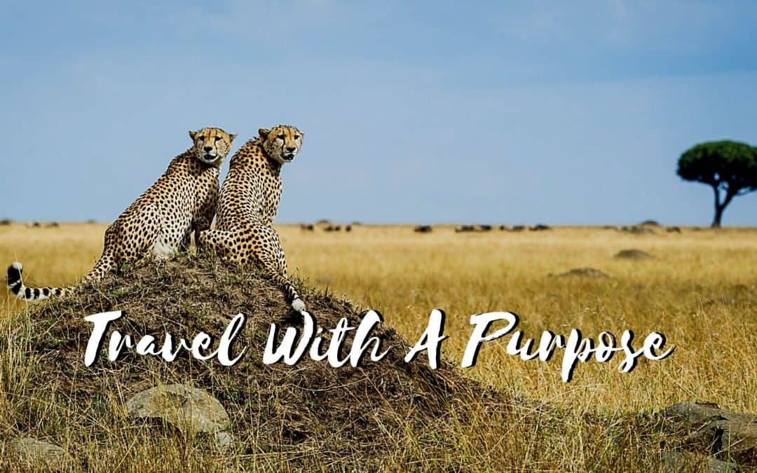 Travel With A Purpose