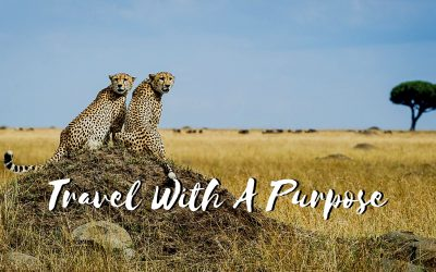 Travelling with a purpose